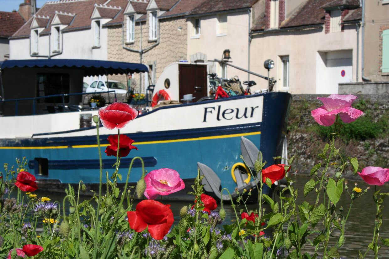Barge Fleur Parijs Montargis Bloemen